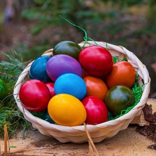 Bild zum Weblog Frühling und Ostern